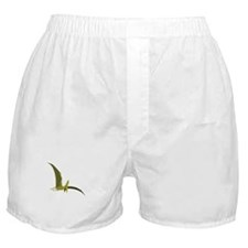 Flying Pterodactyl Boxer Shorts