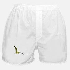 Flying Pterodactyl Boxer Shorts
