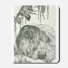 Pekingese, Orchids and Cockatiels Mousepad