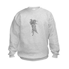 The mountain lion, also calle Sweatshirt
