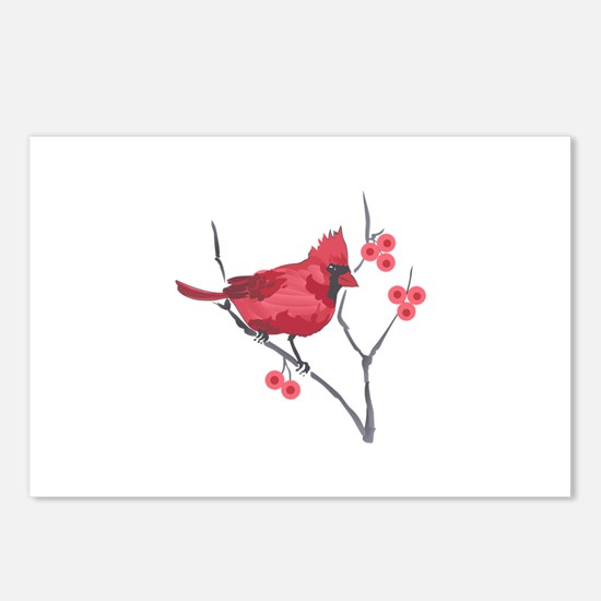 CARDINAL AND BERRIES Postcards (Package of 8)