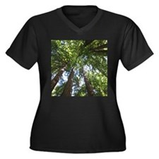 up into treetops, Muir Woods, Ca Plus Size T-Shirt
