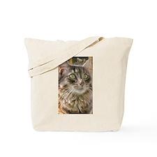 Buddy Boo Boo Cat Tote Bag