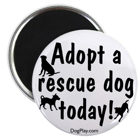 Adopt a Rescue Dog Today Magnet