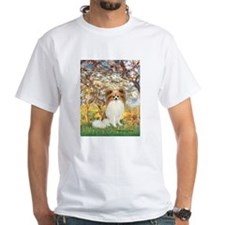 Spring / Papillon Shirt