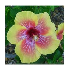 Hawaiian Hibiscus Tile Coaster