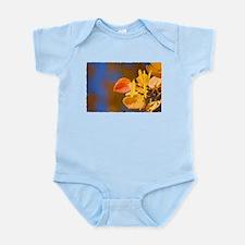 Aspen Colors Infant Bodysuit