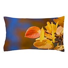 Aspen Colors Pillow Case