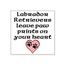 Labrador Retrievers Leave Paw Prints On Your Heart