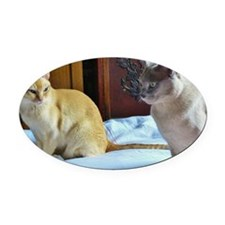 Red and Lilac Burmese Cats Oval Car Magnet