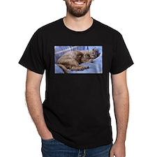 Blue Tortoiseshell Burmese Cat T-Shirt