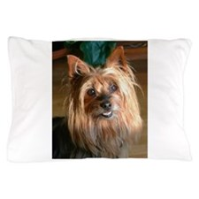 Australian Silky Terrier headstudy Pillow Case