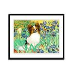 Irises / Papillon Framed Panel Print