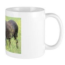 Wild Burro Mug