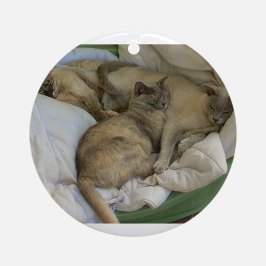 Burmese Cats asleep Ornament (Round)