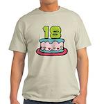 18 Year Old Birthday Cake Light T-Shirt