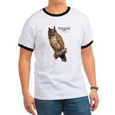 Madagascar Long-Eared Owl T