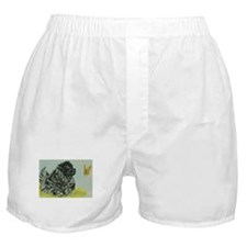 Chow Chow Dog with Butterfly Boxer Shorts
