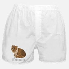 Cool Diabeetis Boxer Shorts