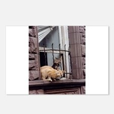City Cats Postcards (Package of 8)