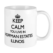 Keep calm you live in Hoffman Estates I Small Small Mug