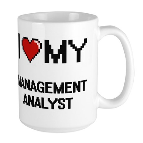 management analyst