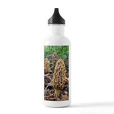 Morels Water Bottle