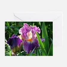 0459 Purple Iris Single Greeting Card