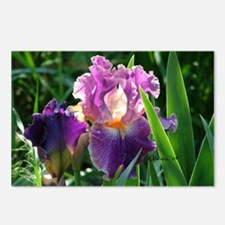 0459 Purple Iris Postcards (Package of 8)