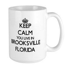 Keep calm you live in Brooksville Florida Mugs