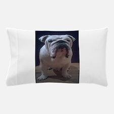 Watcha Doing ? Pillow Case
