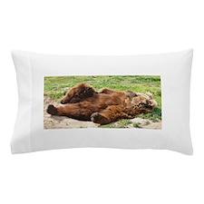 Sleeping Brown Bear Pillow Case