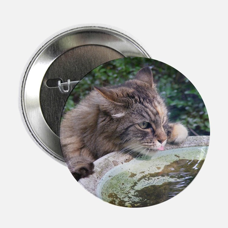 Maine Coon cat birdbath Button