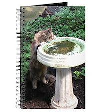 Maine Coon cat birdbath Journal