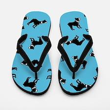 Boston Terriers on Blue Flip Flops