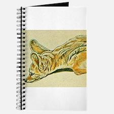 Fennec Fox Journal
