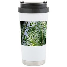 Wet Leaf Travel Mug