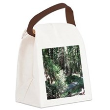 Muir Woods Canvas Lunch Bag