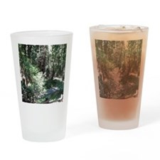 Muir Woods Drinking Glass