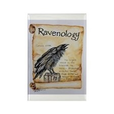 Cute Ravens Rectangle Magnet