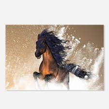 Awesome, beautiful horse Postcards (Package of 8)