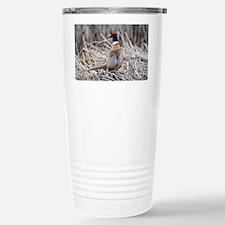 Ring Necked Pheasant Stainless Steel Travel Mug