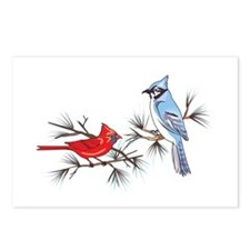 BLUEJAY AND CARDINAL Postcards (Package of 8)