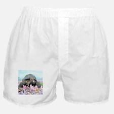 Cute Tortoise Boxer Shorts