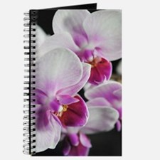 Two Pink White Orchids Journal