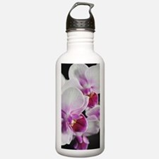 Two Pink White Orchids Water Bottle