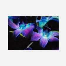 Two Purple Orchids Rectangle Magnet