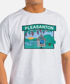 Pleasanton Organic Cotton Tee T-Shirt