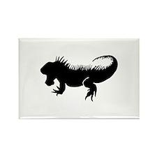 Iguana Silhouette Magnets