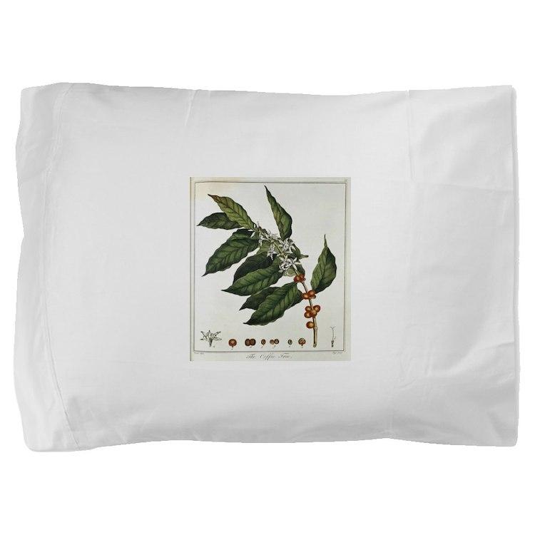 FIN-coffee-arabica-botanical.png Pillow Sham